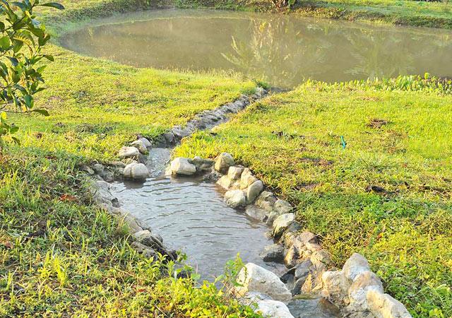 Bj rn 39 s blog chiang dao house for Koi pond overflow design